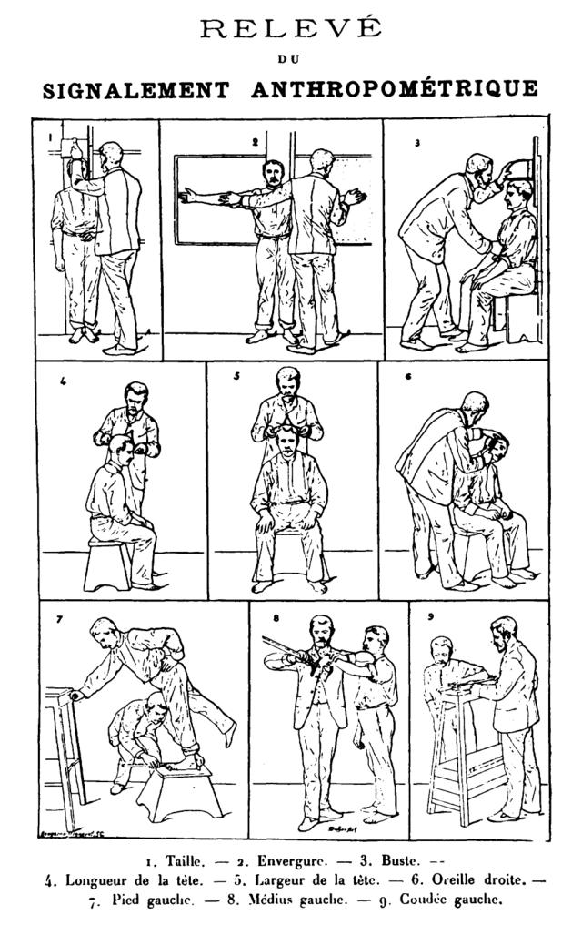 Relevé anthropométrique du système Bertillon